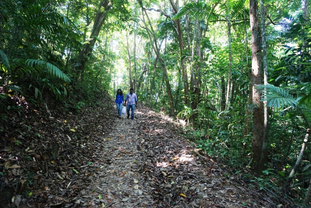 Andaman and Nicobar islands: Sublime essence of nature 8
