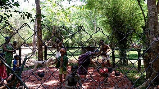 Coorg: unseen 7th Heaven 26