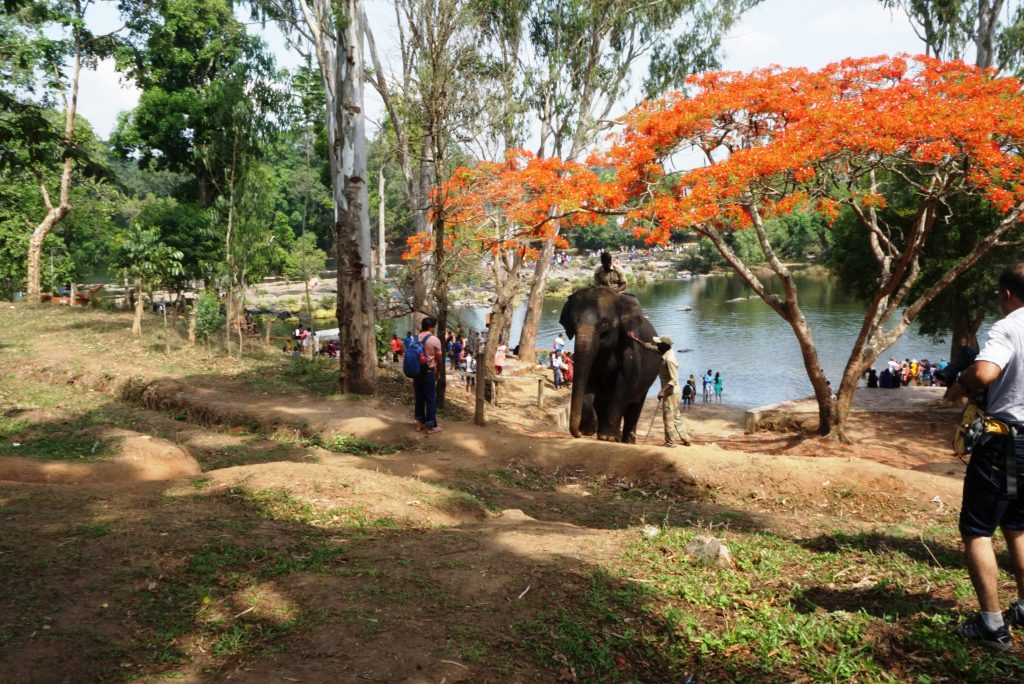 Coorg: unseen 7th Heaven 8