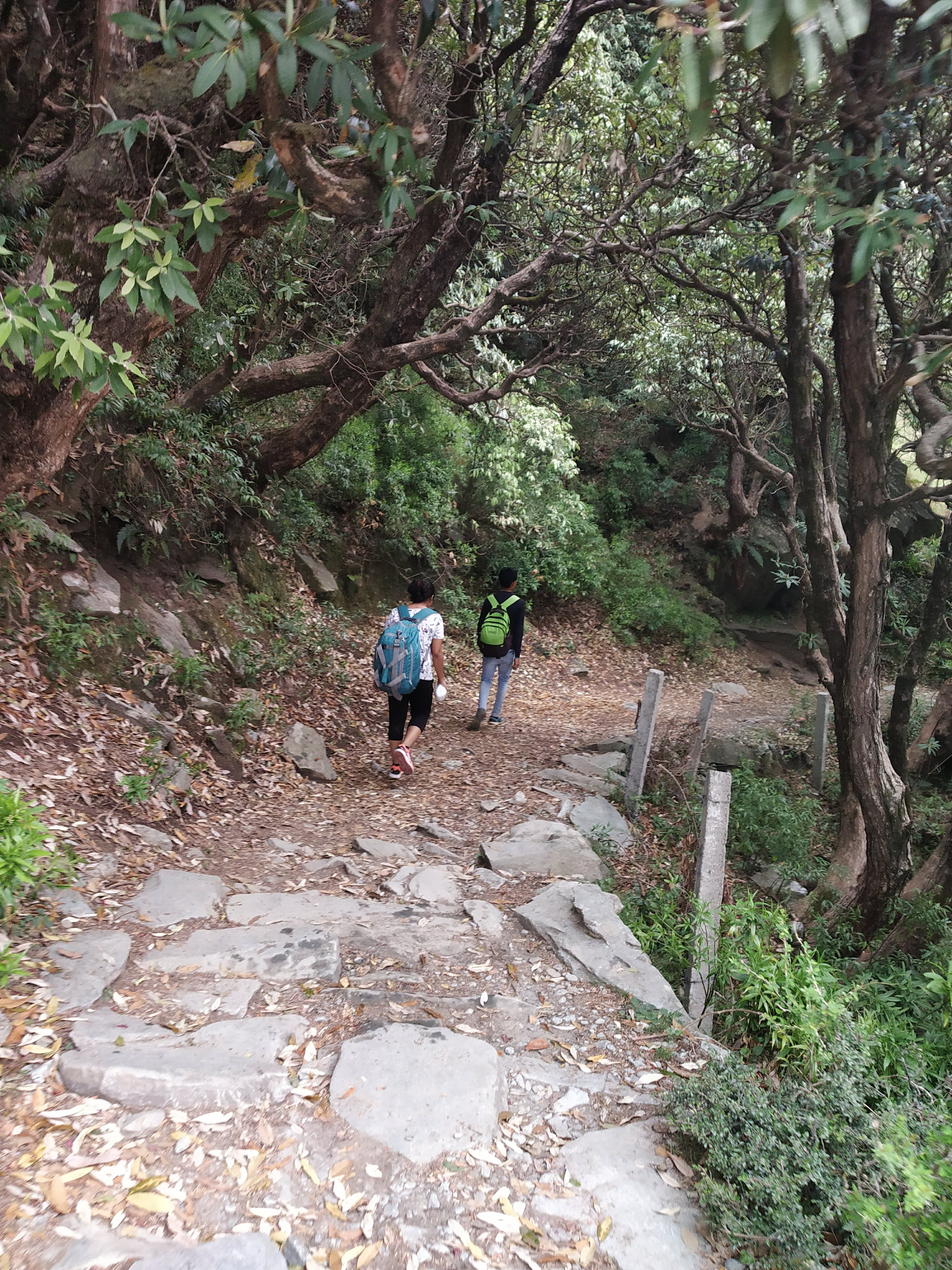Things You Must Know Before Going On Triund Trek 3