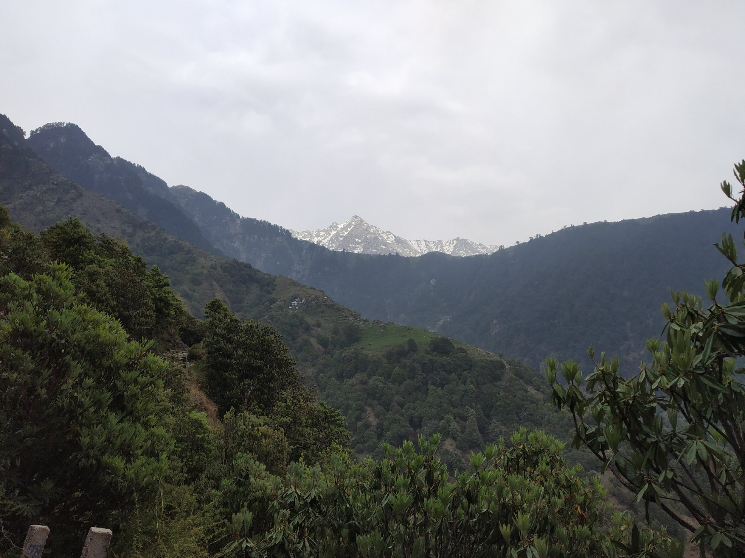 Things You Must Know Before Going On Triund Trek 5