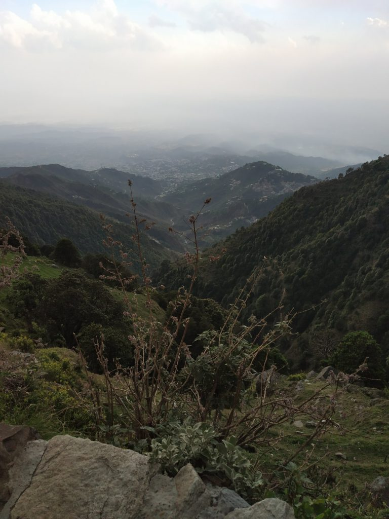 Things You Must Know Before Going On Triund Trek 6