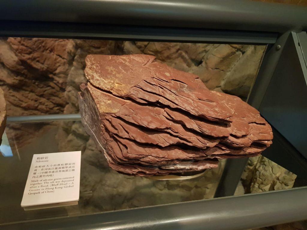 Frenzy 5 Fossils 10